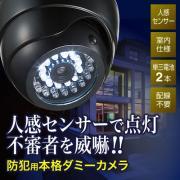 ダミー防犯カメラ(ドーム型、白色LED、電池駆動)